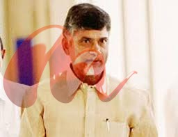 Naidu-should-concentrate-on-AP